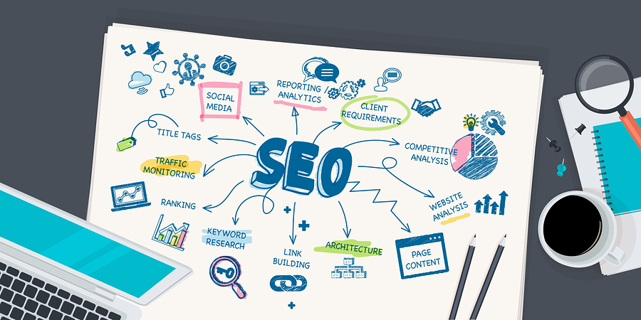 SEO differences and types