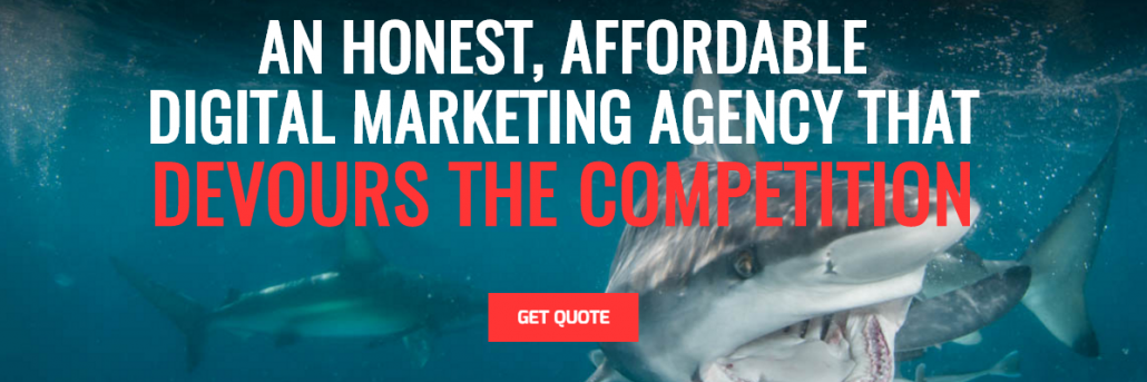 seo sharks business description